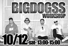 10/12-BIGDOGSS-workshop