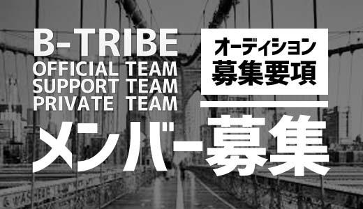 12代目 オフィシャルオーディション仮申込